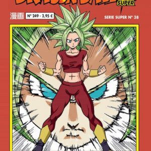 DRAGON BALL SERIE ROJA 249